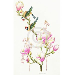 Magnolia en vogels